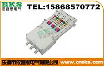 (铸铝)现场控制按钮箱BXK-A2D2B1K1