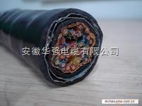 DJYP2VP2-22-4*2*1.5计算机电缆