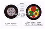 BPYJVPX12R-TK变频电缆