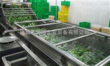 定制蔬菜清洗机气泡蔬菜清洗线