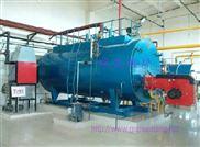 北京东城区燃气18公斤压力蒸汽锅炉