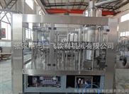 QGF-飲用純水生產條線