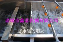 鑫富-牛蒡清洗机