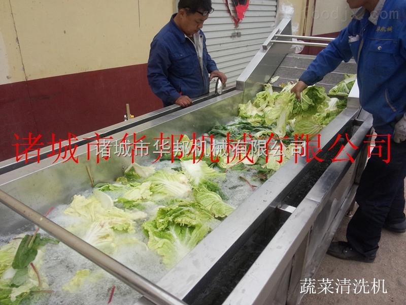 供应全不锈钢网带连续式蔬菜清洗机
