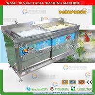 WASC-20超声波多功能洗菜机 果蔬清洗机 叶菜清洗机 商务洗菜机