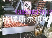 dly1-供应康尔牌鸡蛋破壳剥壳机生产流水线 鹌鹑蛋剥壳机
