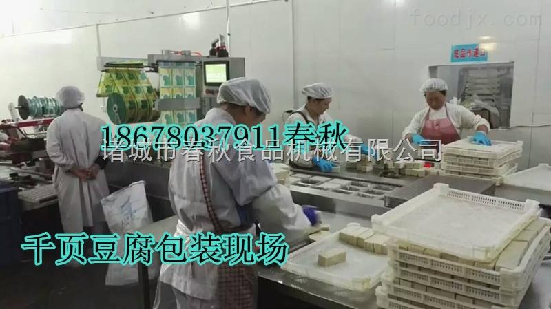 山东生产千页豆腐机器的厂家,无泡千页豆腐2吨货设备投资多少钱
