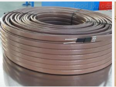 3BTV2-CT型自限温伴热电缆