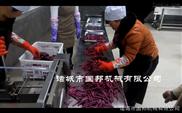 GB-600-供应红薯地瓜切条机 诸城薯条机 批发零售