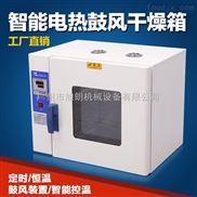 食品、藥材專用設備鼓風智能數顯型電熱恒溫干燥箱