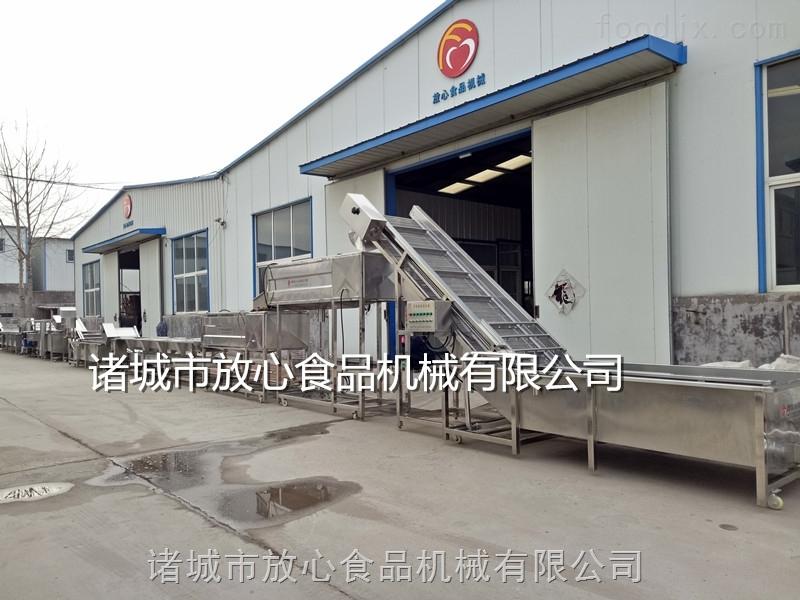 诸城净菜加工设备厂家 蔬菜清洗机