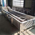 HY-4000大型辣椒清洗机设备厂家