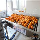 专业生产血橙清洗流水线厂家