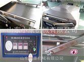 小康DZ-600/2S米砖真空包装机