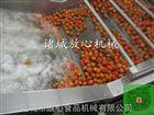 山楂清洗机_水果清洗机