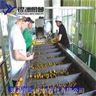 刺梨汁生产线价格