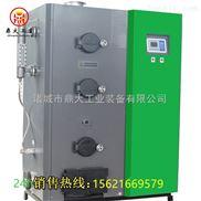 鼎大生物质蒸汽发生器