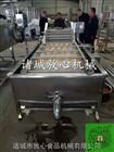 FX-800马齿笕蔬菜清洗机