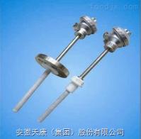 WRN-230-F防腐热电偶