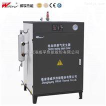 全自动小型免检电加热蒸汽发生器