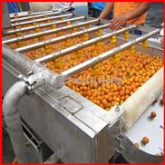 德州廠家供應柿子清洗機