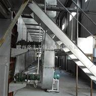 DWT供应苹果片干燥设备