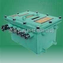 固定式甲烷断电仪