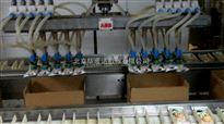 机械手自动装箱系统厂家