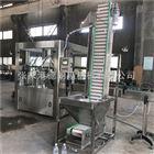 GF24-8玻璃水灌装生产线