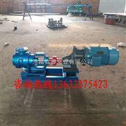 双12优惠高粘度转子泵NYP10-1.0转子泵嘉睿泵业