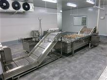 DK-4000果蔬加工设备叶菜类清洗机