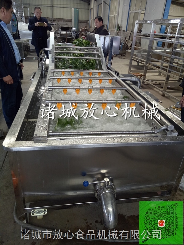 叶菜蔬菜净菜加工设备