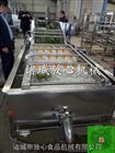 FX-800山野菜成套设备