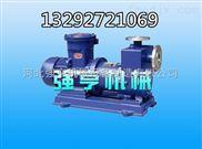 临夏强亨ZCQ磁力离心泵安全卫生性能可靠